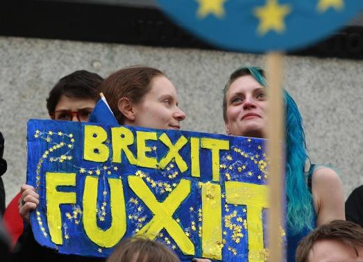 Brexit referendum anti leave result demonstration