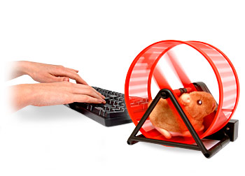 00375180-photo-roue-hamster-usb